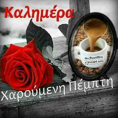 Beautiful Pink Roses, Good Morning Greetings, Good Night Quotes, Anastasia, Thursday, Chocolate, Women, Quotes, Chocolates