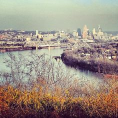 Love my city... Summer Nights in the Nati: The Summer in Cincinnati To-Do List