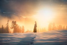 Into the Light by elizabethgadd via http://ift.tt/2s3sRqQ