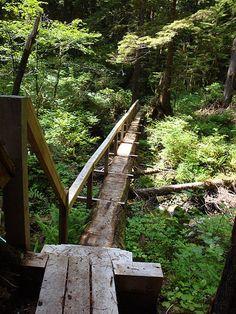 49 Backyard Garden Bridge Ideas And Designs Photos