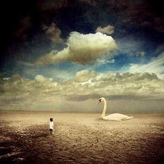 Photo Manipulation by Albulena Panduri, a digital artist, photographer born in Peja, Kosovo.  - the story about the big swan