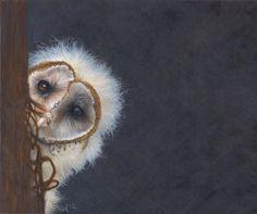 Fuzzy Wuzzy was an Owl by *Novawuff on deviantART