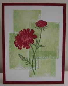 Blocked Field Flowers - TLC334