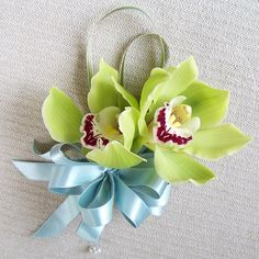 pin-on corsage with green cymbidium orchids and variegated lily grass finished with a blue bow Hydrangea Corsage, Orchid Corsages, Flower Corsage, Prom Flowers, Wedding Flowers, Green Orchid, Cymbidium Orchids, Corsage Wedding, Paper Flowers