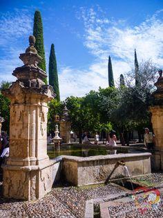 Patio de los Naranjos. Córdoba, Andalucía, España.