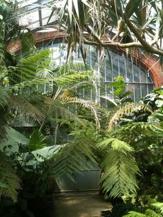 Jardin botanique de Metz, une serre toute de verre et de brique ❤❤❤