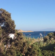 The view from our offices at Seaside Cottage by Belvedere at Psarou Beach, Mykonos