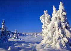 Paysage enneigé dans la station de ski de Sjusjøen en Norvège. #croisière #croisierenet.com #voyage #Norvège #ski #neige #croisièreeuropedunord Destinations, Mount Rushmore, Ski, Pastel, Mountains, Photos, Photography, Travel, Outdoor