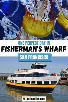 My suggested itinerary for the Fisherman's Wharf District offers you an easy way to explore this area. It offers you one perfect day to see everything you can! #fishermanswharf #sffishermanswharf #sanfranciscothingstodo California Travel Guide, Lakes In California, California Coast, Fisherman's Wharf San Francisco, Golden Bear, New Mexico, Wyoming, Travel Guides, Kayaking