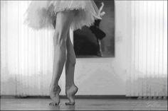 Rosy Ballet Dreams : Photo