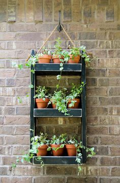 Beaune Wall Planter - Plant Pots Now Included - LIMITED TIME SPECIAL! by iirntree on Etsy https://www.etsy.com/listing/278251438/beaune-wall-planter-plant-pots-now