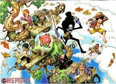 Straw Hat Pirates - One Piece,Anime