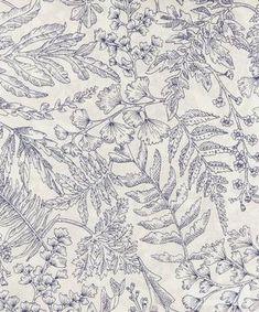 Montgomery Tana Lawn™ Cotton