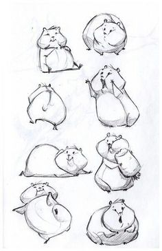 Drawing Animals in the Zoo - Drawing On Demand Cute hamster sketches. Horse Sketch, Sketch Art, Drawing Sketches, Drawing Ideas, Drawing Process, Zoo Drawing, Drawing Animals, How To Draw Animals, Cartoon Drawings Of Animals