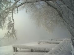 Browse Winter Landscapes photos and videos. I Love Snow, I Love Winter, Winter Wonder, Winter Is Coming, Winter Snow, Winter White, Cozy Winter, Winter Magic, Winter Scenery