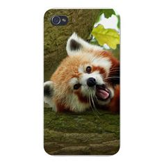 "Apple Iphone Custom Case 4 4s Snap on - Cute Red Panda Yawning on Tree Funny. FITS IPHONE 4 AND 4S. SNAP ON BACK PLATE. Measures 4.5"" x 2.25"", Hard plastic, durable and lightweight. Protects edges and back of phone from bumps and scratches. Compatible with Iphone 4 universal Sprint - AT&T - Verizon."