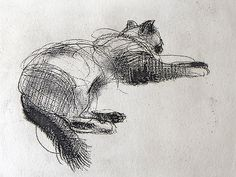 'Sleeping cat ' by  Felicity House. Etching.
