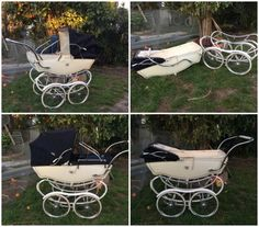 Although this is not a pedigree, I'd love one, it's a Burlington, the full sized version of my SX doll pram.