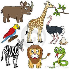 African Animals Collection [1]