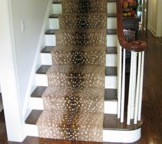 Best 1000 Images About Antelope Runner On Pinterest Stair 400 x 300
