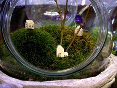 terrarium by koko studios, via Flickr