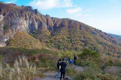 Yeongsil Trail (Hallasan National Park) (한라산 영실)