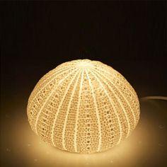 sea urchin lamp photo - 1