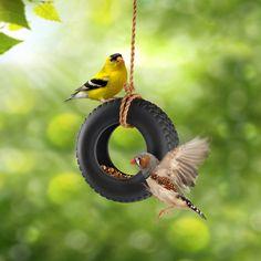 Swing Time Bird Feeder