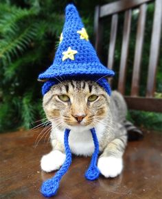 Wizard Cat Hat - Wizard Cat Costume - The Wizard of Cats Hat - Custom Wizard Hat for Cats and Small Dogs - Cat Dog Halloween Costume Crochet Kawaii, Gato Crochet, Crochet Amigurumi, Crochet Hats, Dog Halloween Costumes, Pet Costumes, Halloween Cat, Costume Chat, Wizard Costume