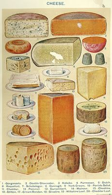 Mrs Beeton's Book of Household Management, 1861 - 1906 Ed. - Cheese