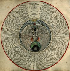 """""""The Hermaphrodite"""" Notice the enormous amount of information written within this image! - Res Obscura: Alchemy"""