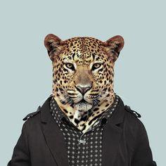 Zoo Portraits - Leopard Fun, beautiful art and a unique gift idea!
