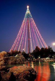 Sky Tower in Sea World San Diego..pretty Christmas lights..