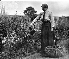 Edwardian lady watering the garden Antique Photos, Vintage Photographs, Old Photos, Vintage Photos, Vintage Cards, Gardening Photography, Vintage Gardening, Antique Clothing, Garden Photos