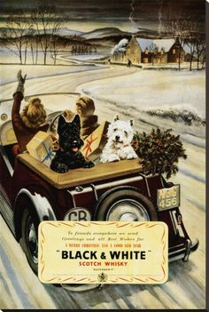 Sweet vintage ad with a westie and scotty dog