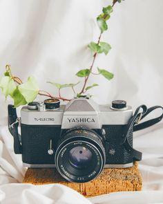 """30 Gostos, 6 Comentários - Graziela 🍒 Lifestyle Blog (@mycherrylipsblog) no Instagram: """"A quarentena está a deixar-me pensativa e nostálgica. As saudades daqueles que mais gostamos…"""" Marshall Speaker, 30, Costa, Japan, Blog, Instagram, Blogging, Japanese"""