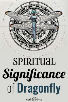 The dragonfly totem carries the wisdom of transformation and adaptability in life. Dragonflies Carry Significant Meaning: Do you see them often? Dragonfly Meaning Spiritual, Dragonfly Symbolism, Dragonfly Quotes, Dragonfly Wings, Spiritual Symbols, Spiritual Meaning, Dragonfly Tattoo, Spiritual Path, Animal Meanings