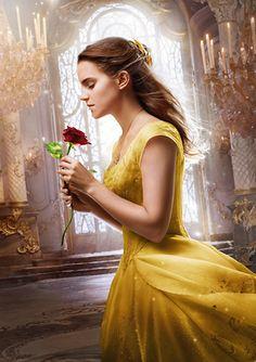 Fondos de Pantalla Emma Watson Rosas La bella y la bestia 2017 ...