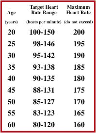 normal heart rate per minute exercise