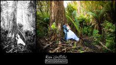 Forest edge gembrook wedding invitations