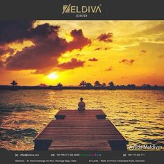 Treat yourself to a holiday in paradise this year at #AyadaMaldives #Maldives #ZeldivaLuxury https://www.zeldivaluxury.com/