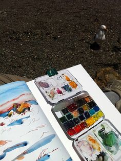California Gull Goes for My Watercolor Palette by apple-pine, via Flickr