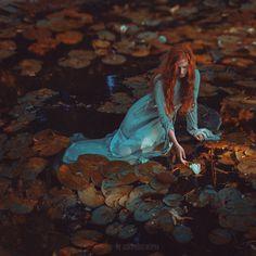 water lily by Anka Zhuravleva on 500px