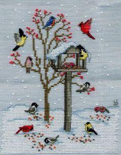 Kuş evi çoooook güzeeelll