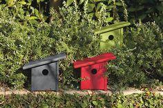Loll Designs: Pitch Bird House