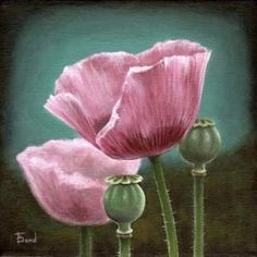 Items similar to Pink poppies - original acrylic painting by Tanya Bond - gallery wrapped canvas on Etsy Pink Poppies, Wrapped Canvas, Bond, Ireland, Crafty, The Originals, Gallery, Artist, Painting