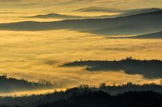 Fog by Peptan Marius