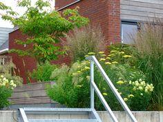 Kleine achtertuin met groot niveauverschil. lage tuindeel ligt aan het water. Bereikbaar met een verzinkt stalen trap.   Design; Oxalis-tuinontwerpen.   Construction; Jeroen Haentjes. Photography; Jeanne van Rijs. Location; Oosterhout (Nijmegen) (the Netherlands)