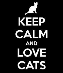 Keep Calm And Love Cats!! :3