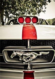 Blown Mustang                                                                                                                                                     Más                                                                                                                                                                                 Más